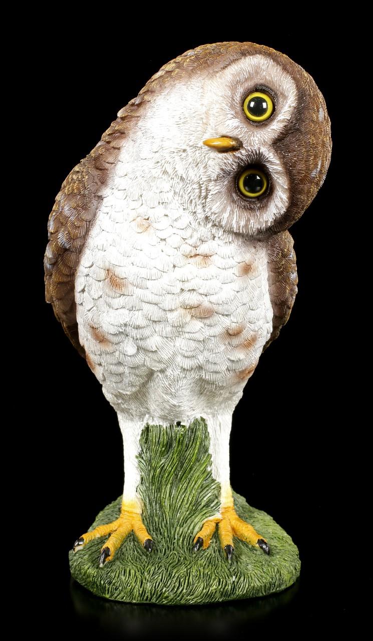 Garden Figurine - Owl tends Head