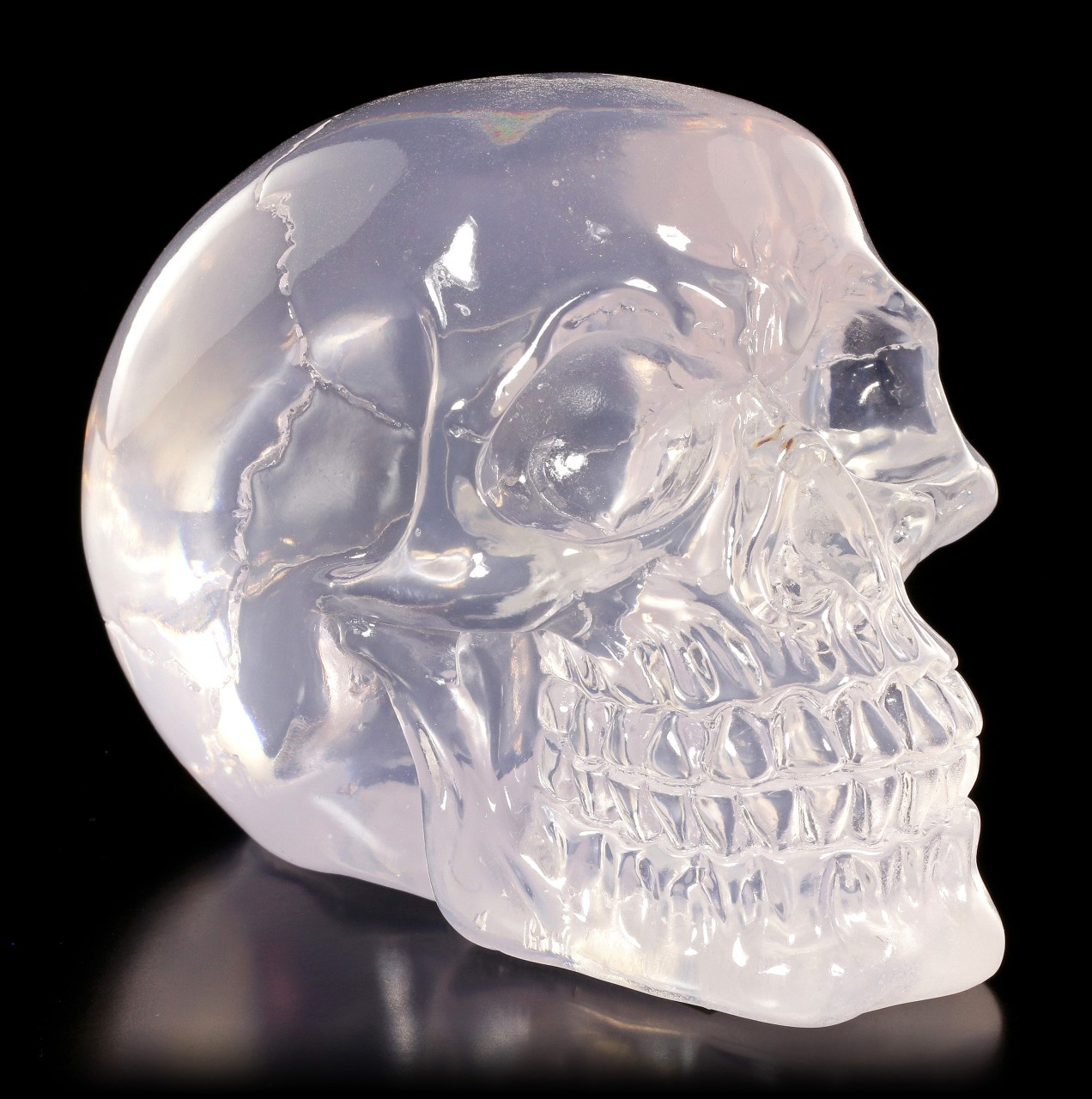 Translucent Skull neutral - Clear Thoughts