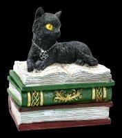 Box - Cat on green Books