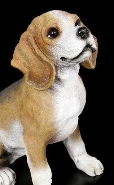 Gartenfigur - Beagle sitzend