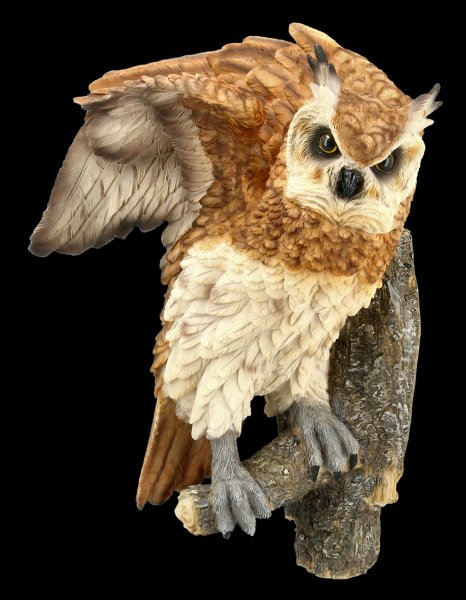 Wall Plaque - Long-Eared Owl sitting on Perch