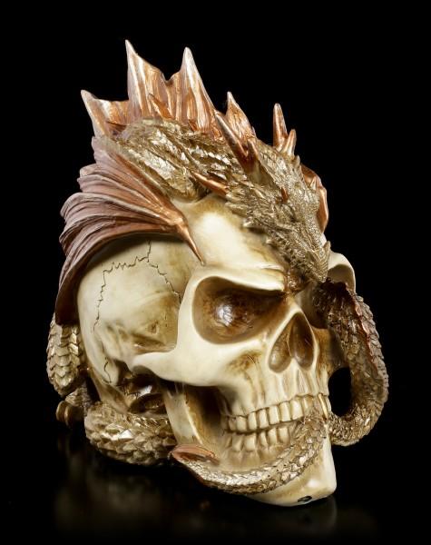 Alchemy Dragon Keeper's Skull
