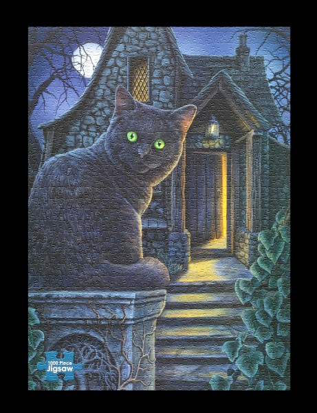 Jigsaw Puzzle with Cat - What Lies Within
