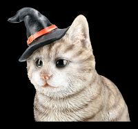 Grey Witches Cat with Wizards Hat