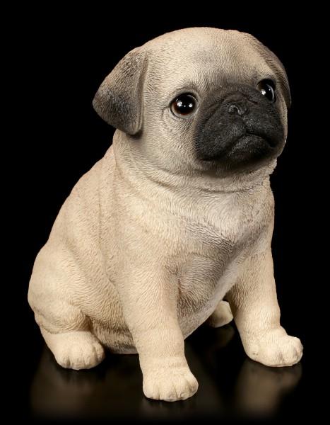 Dog Puppy Figurine - Pug
