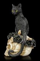 Alchemy Cat on Skull