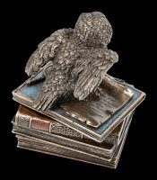 Box - Snow Owl on old Books