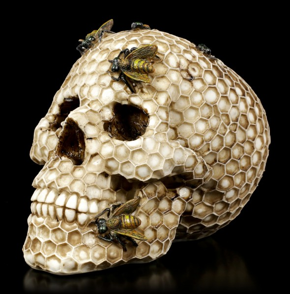 Skull with Honeycomb and Bees - Beehive