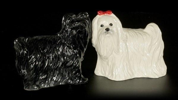 Salz und Pfeffer Streuer - Malteser Hunde