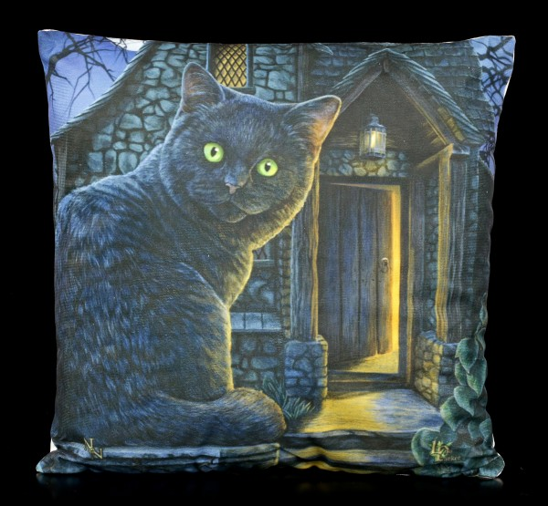 LED Cushion with Cat - What Lies Within