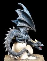 Dragon Box - Cryondrix District
