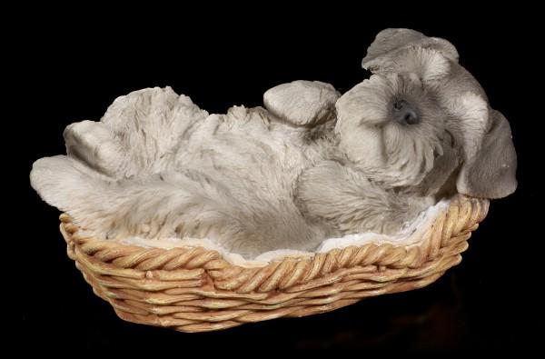 Dog in Basket Figurine - Schnauzer