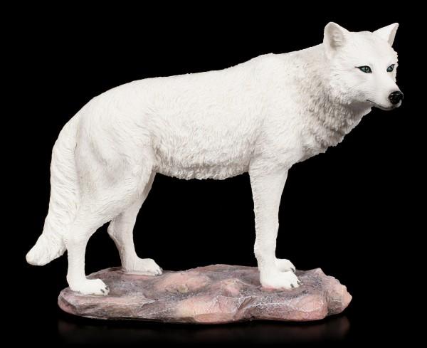 Wolf Figur - White Spirit