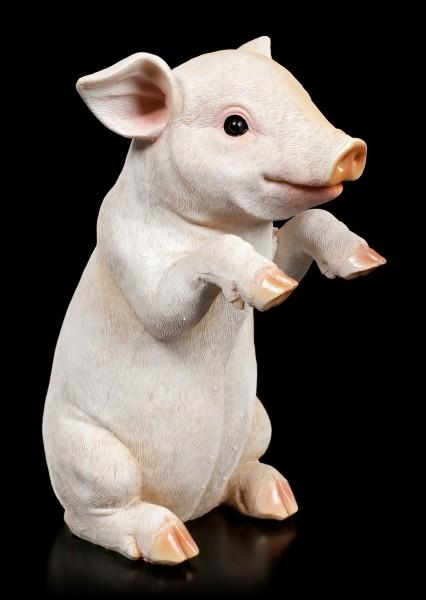 Garden Figurine - Begging Piglet