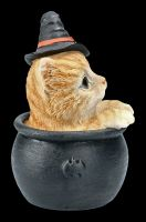Tabby Witches Cat in Cauldron