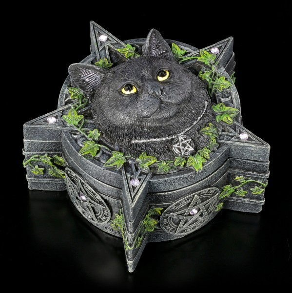 Pentagram Box with Cat - The Charmed One