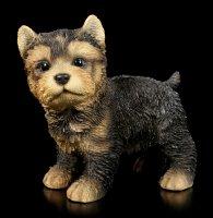 Dog Figurine - Yorkshire Terrier Puppy standing