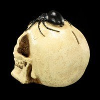 Money Bank - Skull with Spider