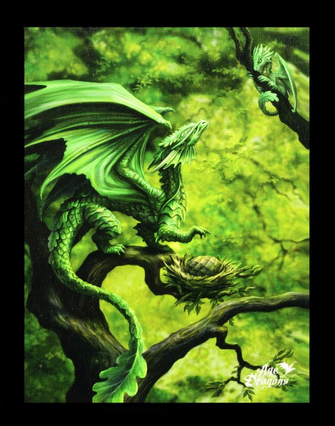 Small Canvas - Age of Dragons - Forest Dragon