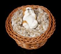 Small Dog Figurine asleep in a Basket