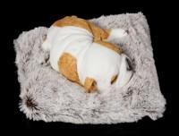 Hunde Figur schlafend auf grauer Decke
