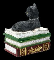 Box - Cat on green Books