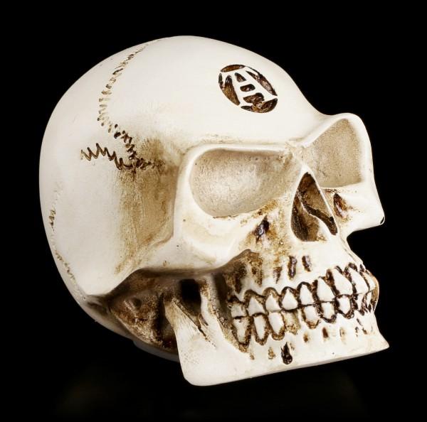 Alchemy Totenkopf Schaltknauf - Alchemist Bone