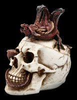Skull Box with Dragon - Draconic Craniotomy