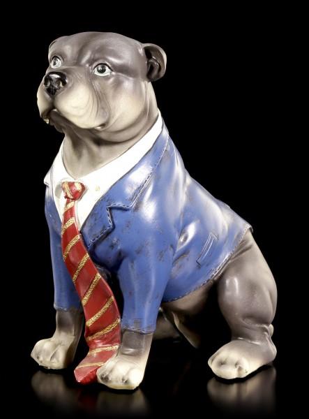 Lustige Hunde Figur - Bull Terrier - Curious Dogs