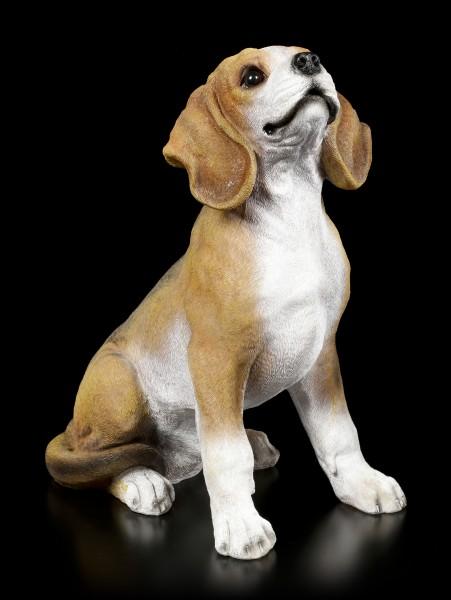 Garden Figurine - Beagle sitting
