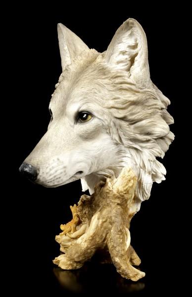 Große Wolfskopf Büste - Herbstzeit