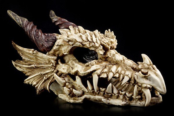 Huge Dragon Skull
