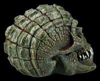Skull - Gatorhead