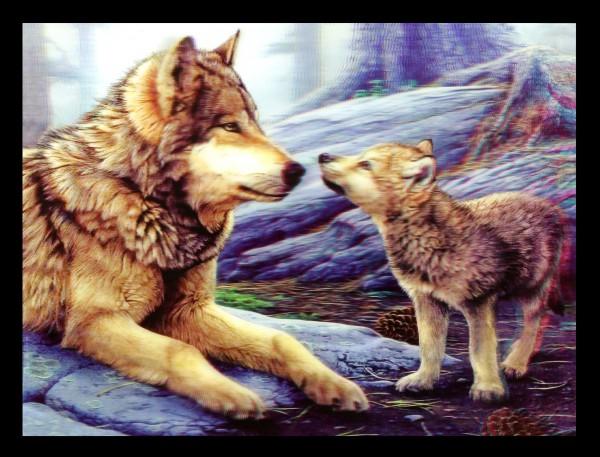 3D-Bild mit Wölfen - Brother Wolf