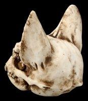 Totenkopf Katze - Bastet Schädel