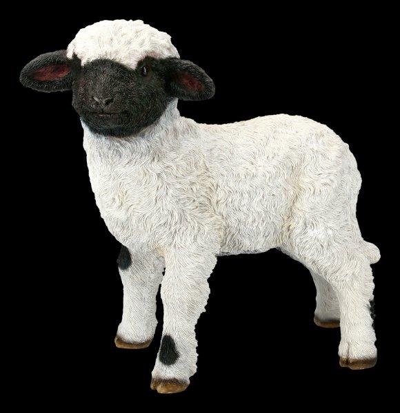 Gartenfigur - Lamm schaut interessiert