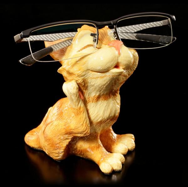 Katzen Brillenhalter - Ginger Cat Scratching - Opti Paws
