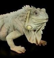 Garden Figurine - Iguana
