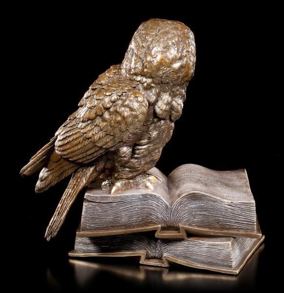 Eulen Figur - Auf Büchern Sitzend