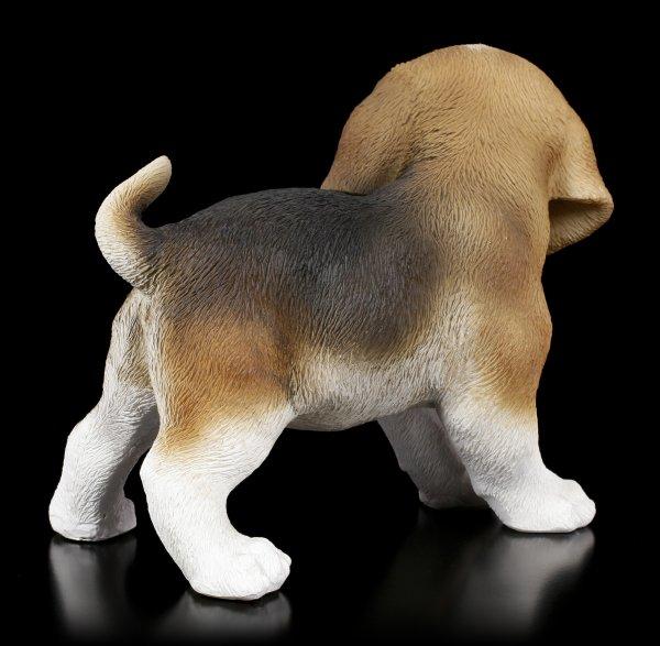 Hunde Figur - Beagle Welpe stehend