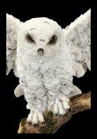 Owl Figurine - Snowy Rest