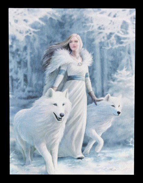 Kleine Leinwand - Winter Guardian by Anne Stokes