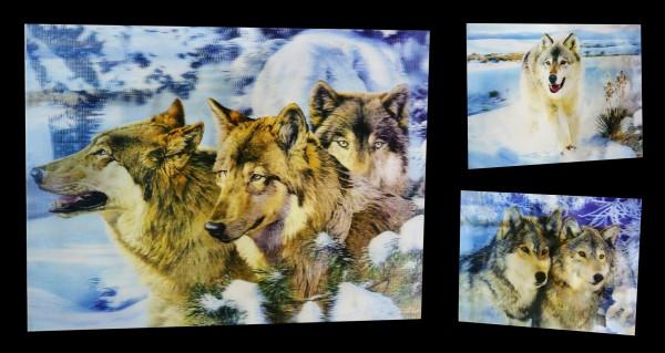 3D-Bild 3in1 mit Wölfen - Winter Dream