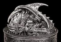 Drachen Schatulle - Meine Kostbarkeiten - silberfarben