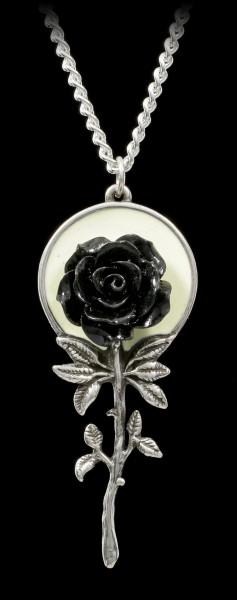 Alchemy Gothic Necklace - Luna Rose