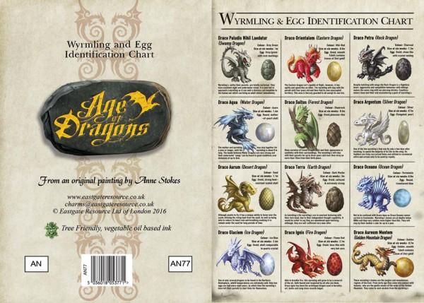 Greeting Card - Age Of Dragons - Wyrmling & Egg Identification Chart