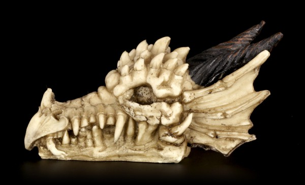 Skull - Dragon with Horns