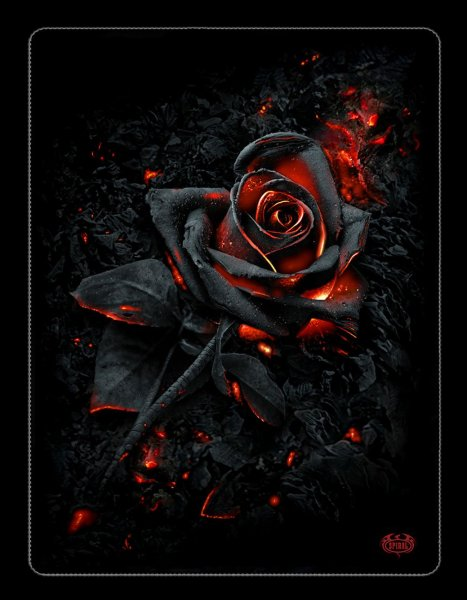 Fleecedecke Gothic - Burnt Rose