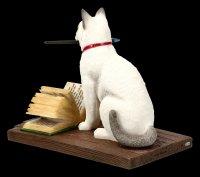 Katzen Figur - Hocus Pocus