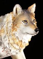 Fairy Figurine - Admina with Timba Wolf